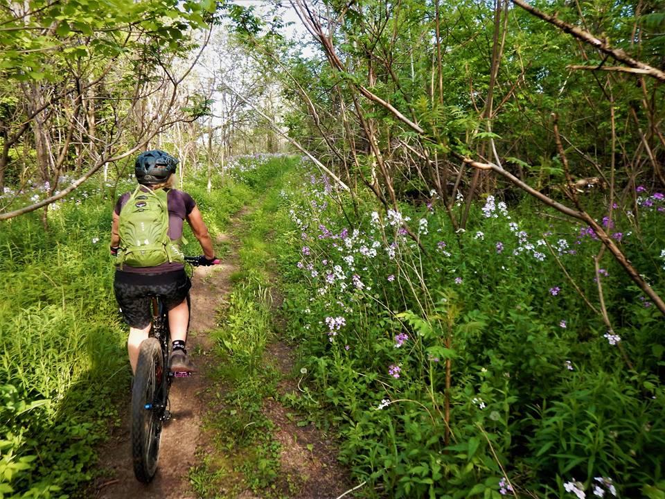 Local Trail Rides-19059509_1939788119598963_8947392375839437001_n.jpg