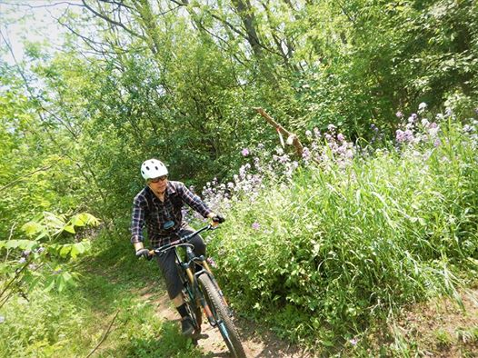 did you ride today?-19059526_1939784409599334_845927830501304636_n.jpg