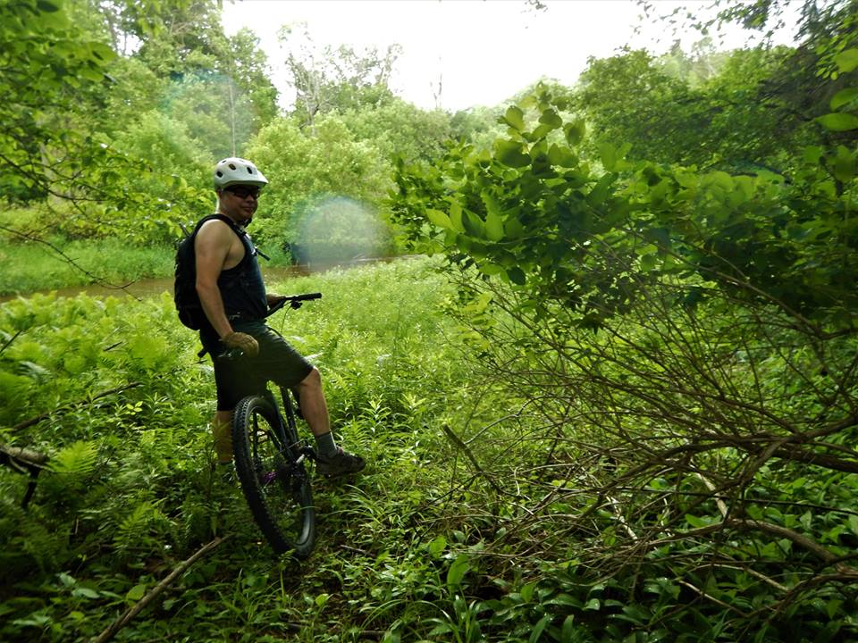 did you ride today?-19274967_1943562009221574_3093619332623005579_n.jpg