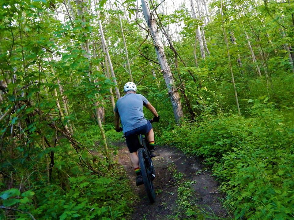 Local Trail Rides-19399438_1946964138881361_2649833643806402505_n.jpg