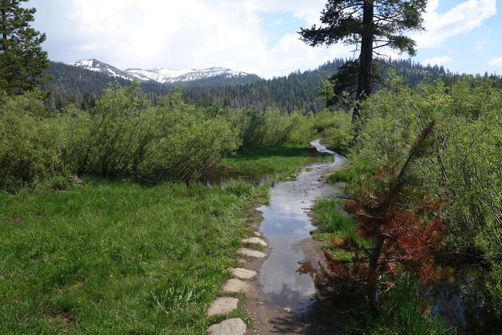 Tahoe conditions-19400219_1601949993211198_6712426818184006901_o.jpg