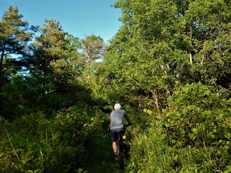 Local Trail Rides-19420753_1946971838880591_3136901421897139976_n.jpg