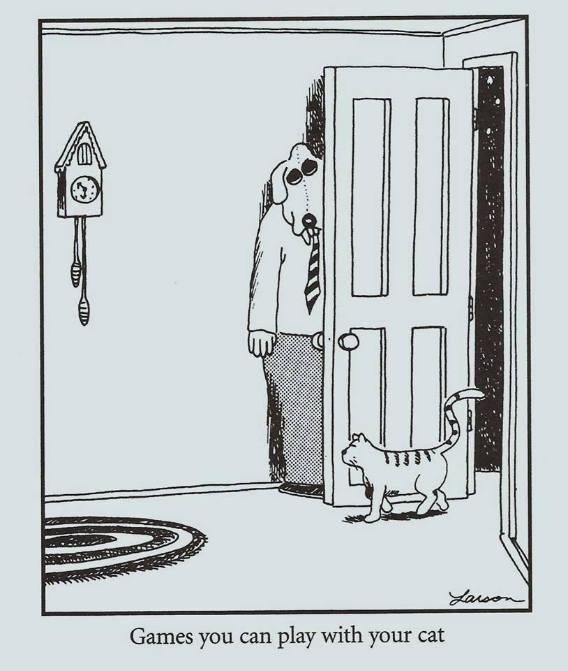 O.C. Official Daily Chuckle thread.... Comic Strip Enhanced...-19510476_1530627673654421_6129427010903508422_n.jpg