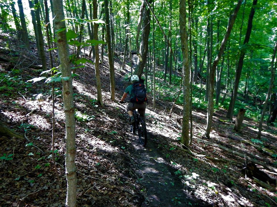 Local Trail Rides-19642258_1951930421718066_1312121763675838656_n.jpg