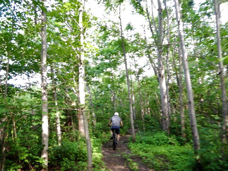 Local Trail Rides-19732153_1952457741665334_7492841693264549948_n.jpg