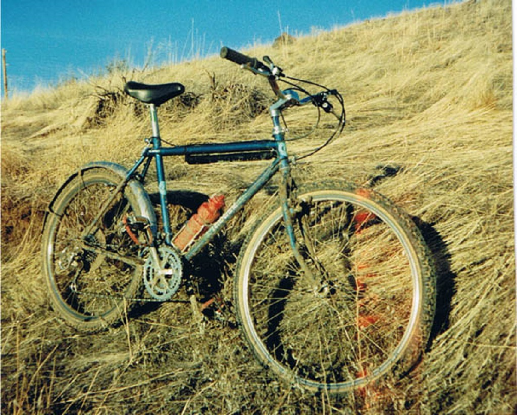 Your first ride-1986gttimberline.jpg