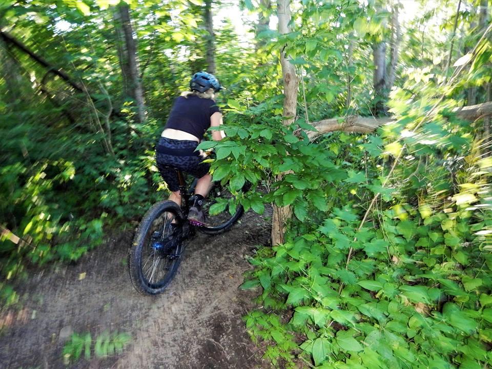 Local Trail Rides-19894619_1955219398055835_7739859458190135682_n.jpg