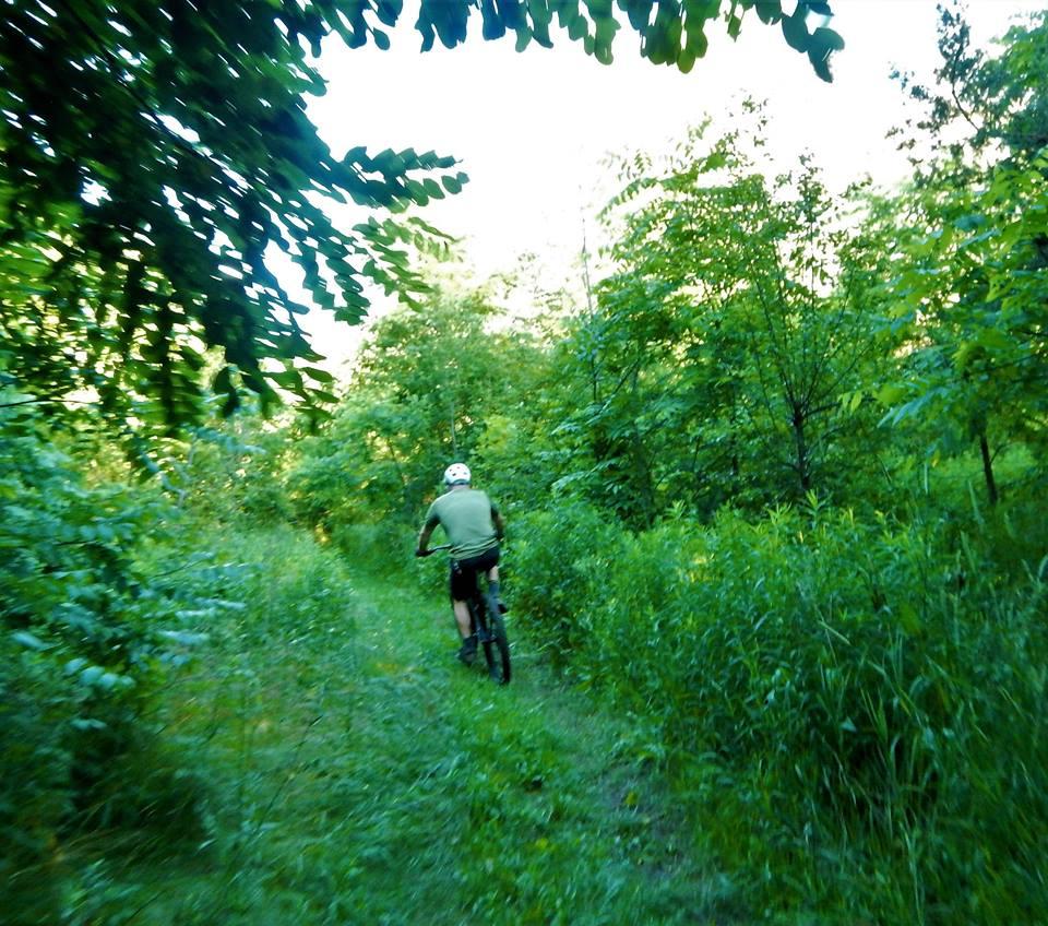Local Trail Rides-19905235_1955217541389354_9152121944473135623_n.jpg
