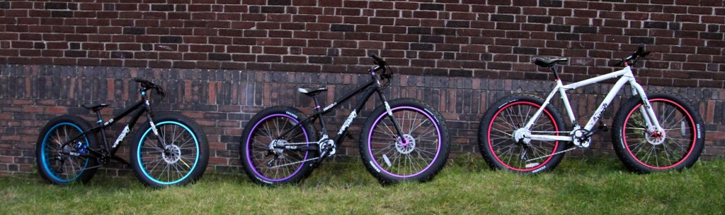 Fatbikes under 00 bucks-19929.jpg