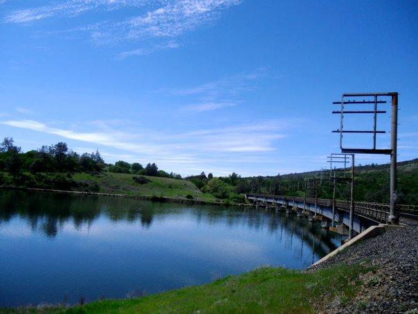 Surprises on the trail-199537_10150135987532970_3402988_n.jpg