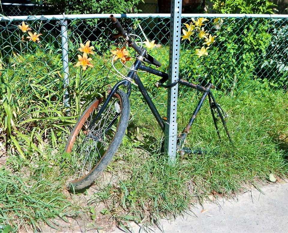 Sad Bikes-19990264_1958852927692482_1396083325091557212_n.jpg