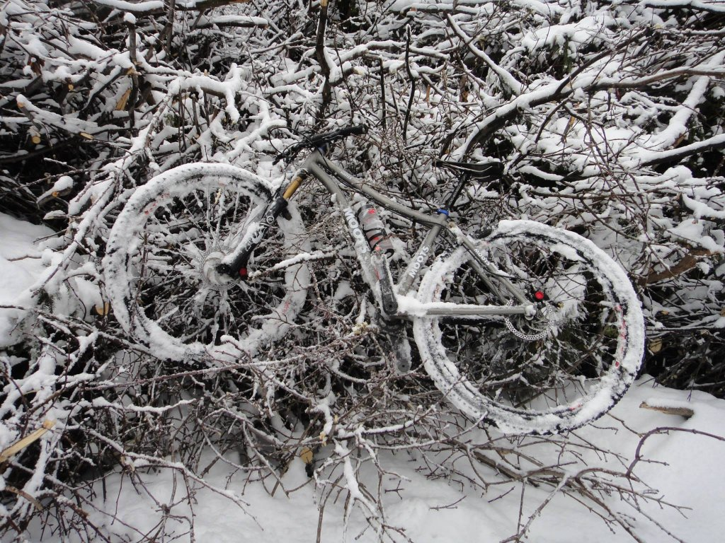Moots Mooto X 29er with a pile of tree debris after the ice storm in Toronto, Canada.-1aaaa.jpg