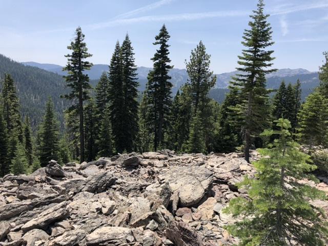 Reno Carson Trail Report Please-1b2422a3-20a2-473e-a17a-fb80b07d73f6.jpeg