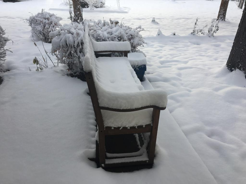 Snow-1c9cc9f0-127b-42a9-83f4-a7566c58fcf1.jpg