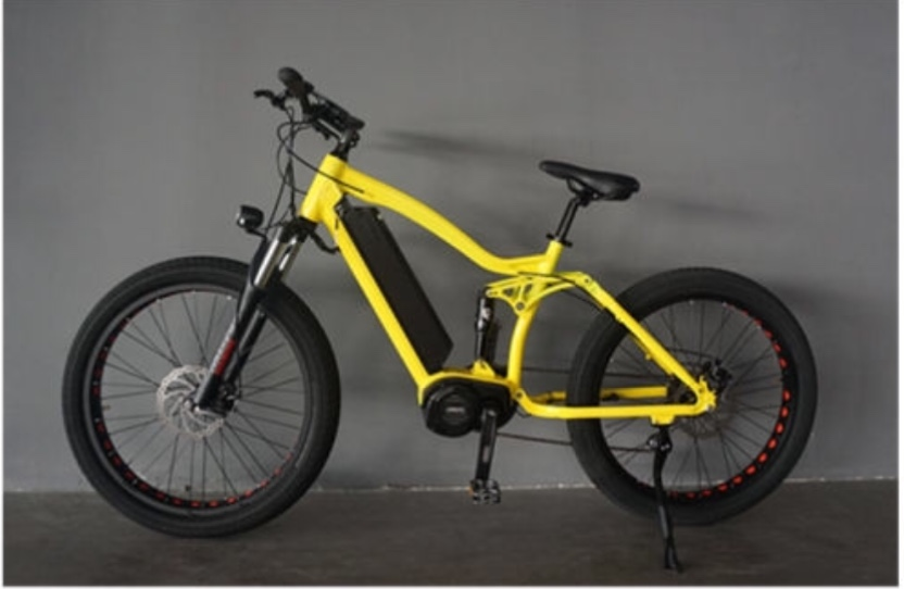 Why Are E-Bikes Such a Touchy Subject in the U.S.?-1d73cfab-4058-46b3-9984-c47d56708fae.jpeg