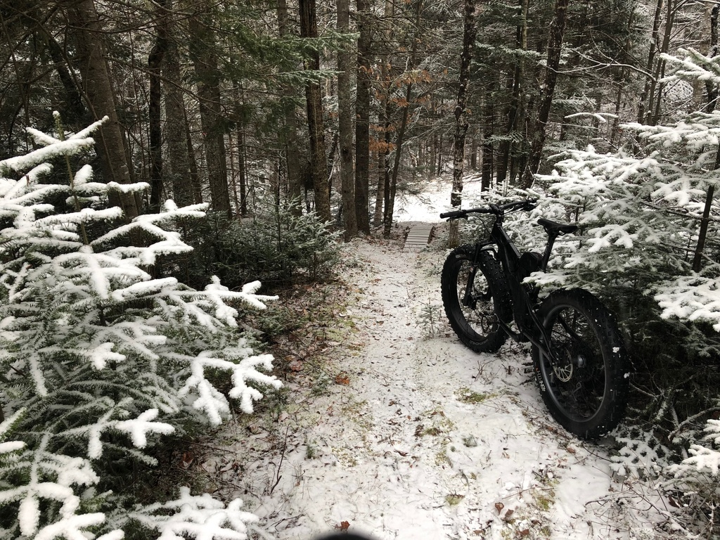 did you ride today?-1last19.jpg