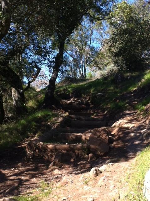 Rockville vs. Skyline (Napa)-2-21-upper-marie-steps-tall.jpg