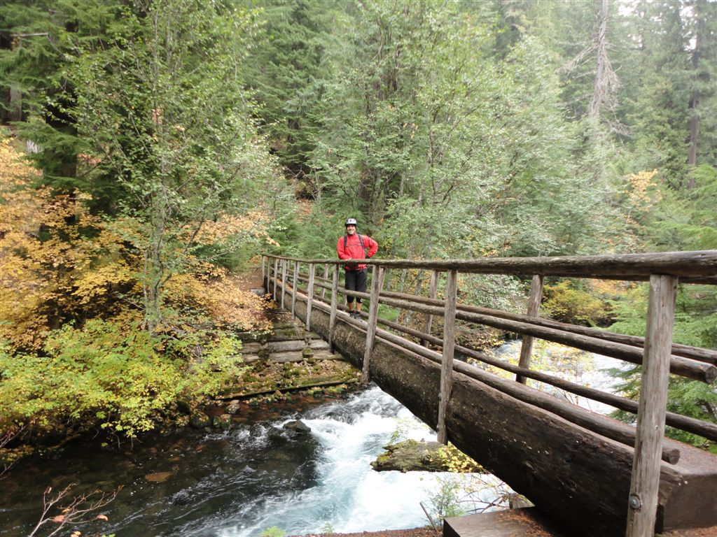 Mckenzie River Trail - Suggestions Needed-2.jpg