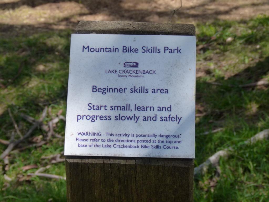 Skills Park Build: Best approach?-2.jpg
