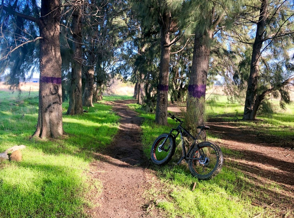 Jan 7-10, 2019 Weekly Trail and Ride Report-2-pump-track.jpg