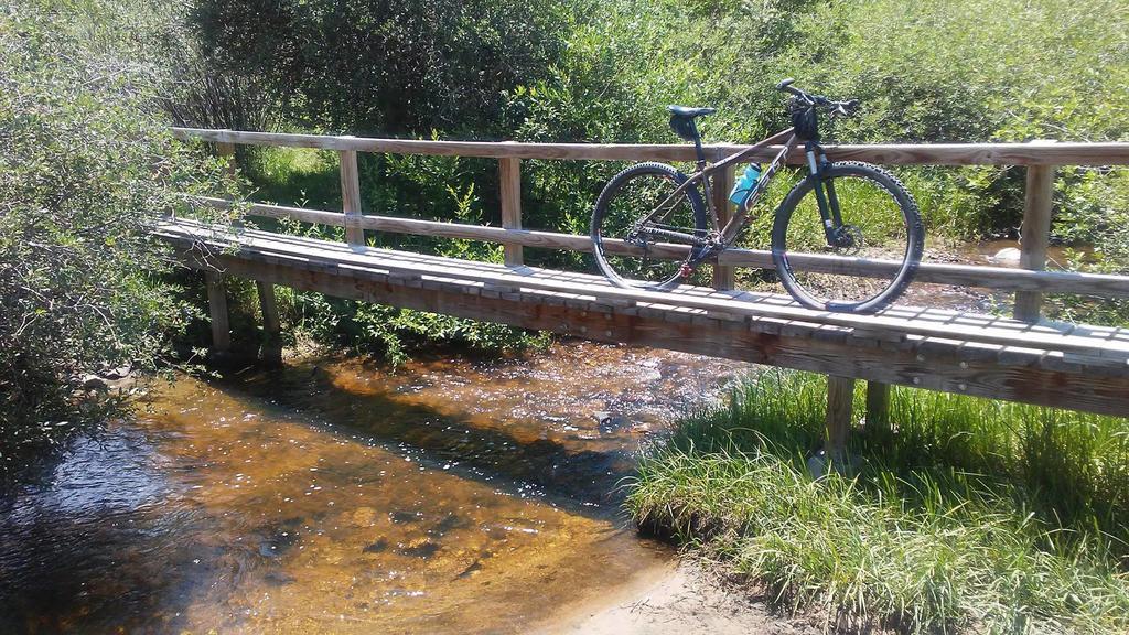 bike +  bridge pics-20017862_10213685070269991_1827722765862168536_o.jpg