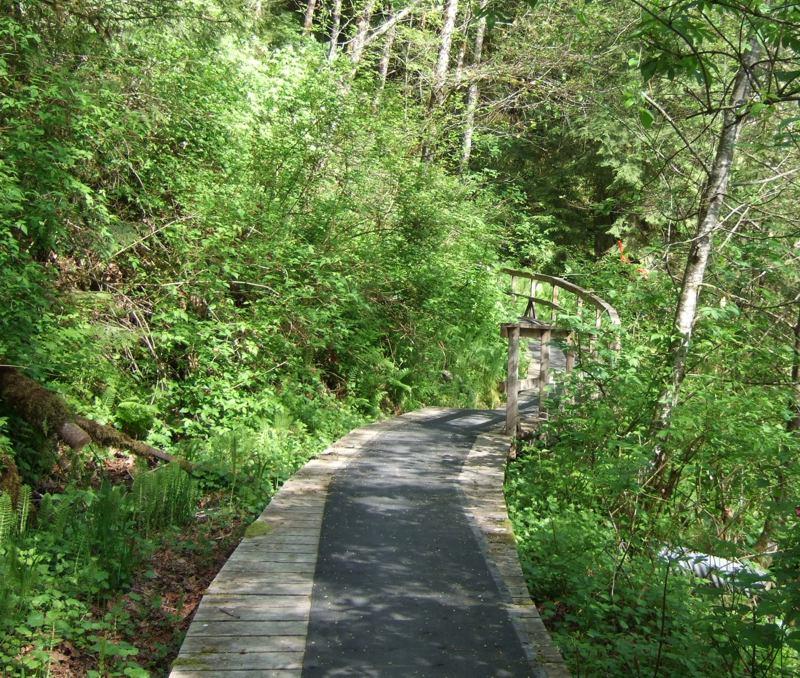 novice and kid friendly trails?-2009_0517new0019.jpg