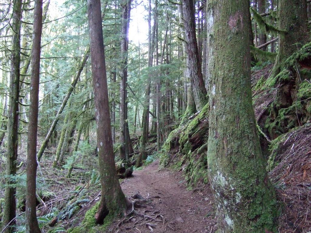 Squamish mid April-2010_0306new0006.jpg
