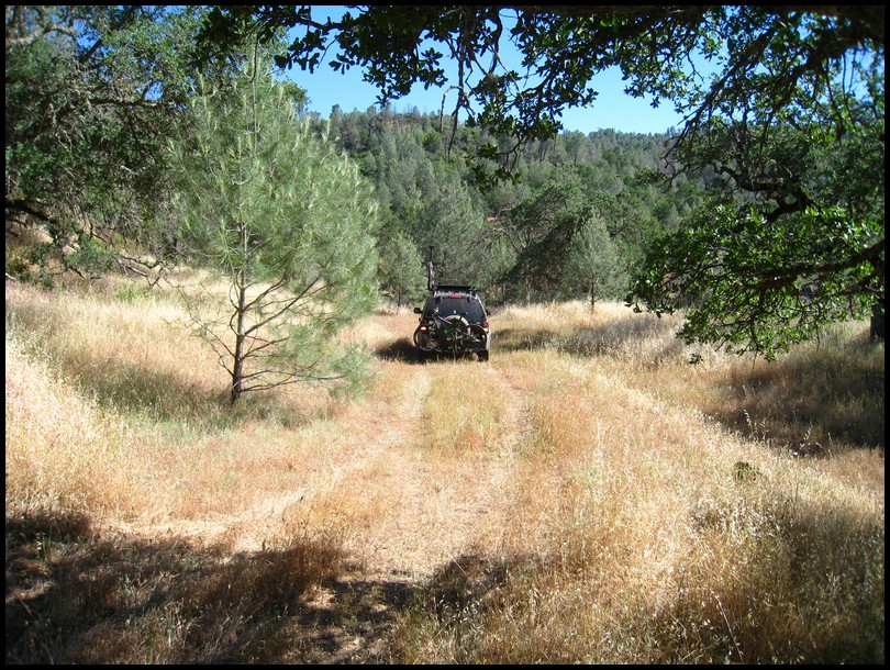 Henry W Coe Trail Work 2nd Saturday June 12 White Tank (Gibbon)-2010_06_13_coe_28.jpg