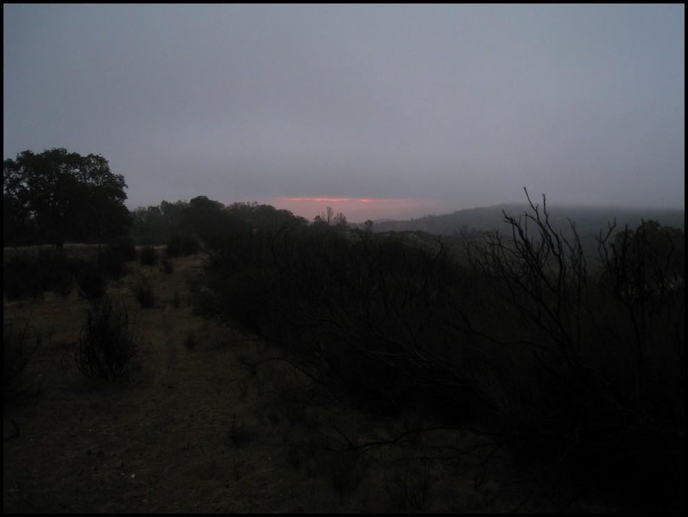 Photo Assignment: Rain-2010_11_06_coe_28.jpg