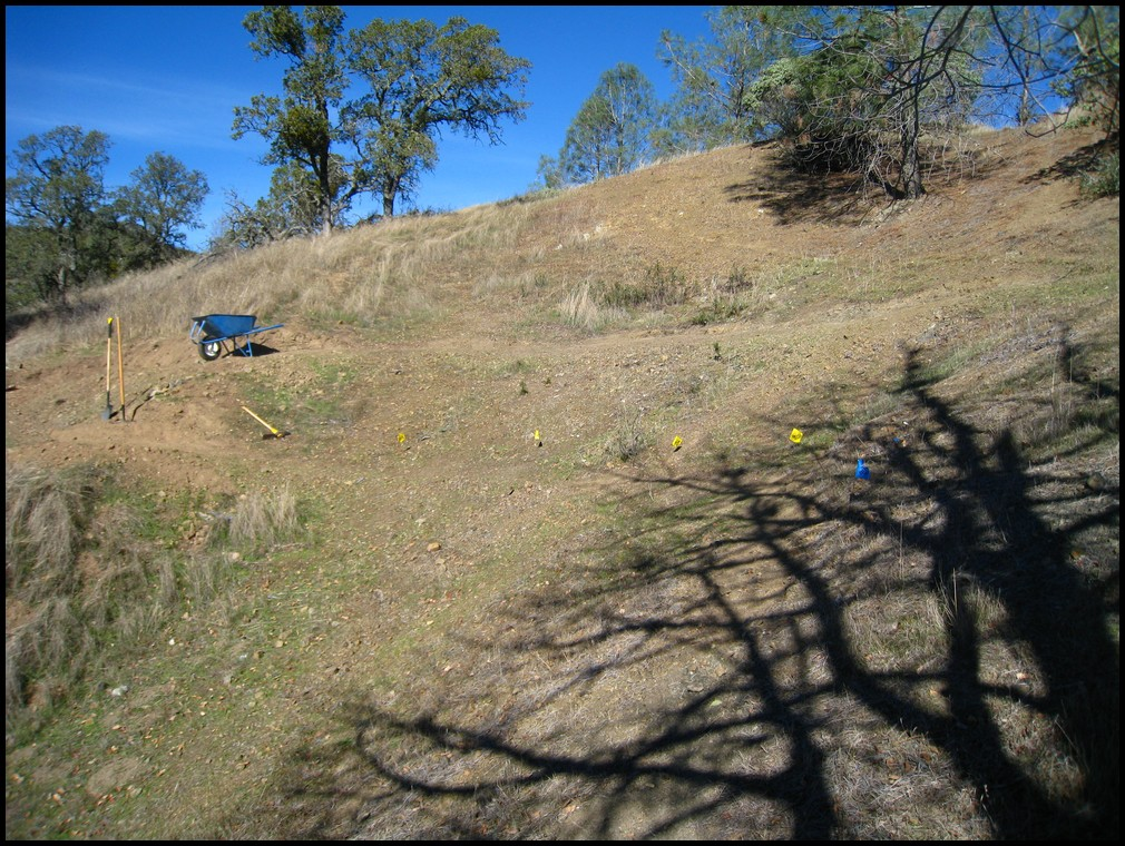 Henry W Coe Trail Work 2nd Sat Nov 13, Hoover Lake Trail (Jackalope) free Maps&Tee's!-2010_11_13_coe_05.jpg