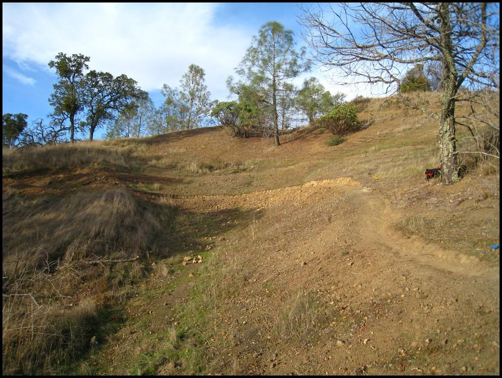 Henry W Coe Trail Work 2nd Sat Nov 13, Hoover Lake Trail (Jackalope) free Maps&Tee's!-2010_11_13_coe_17.jpg