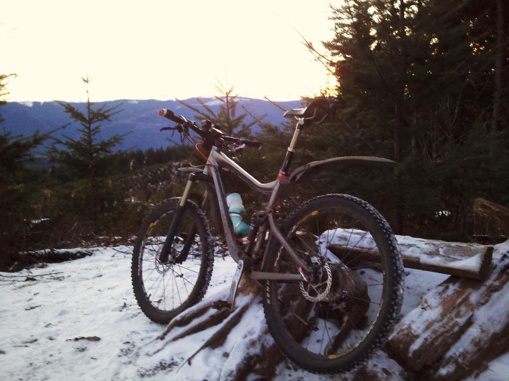 Another Stolen Bike! 2008 Giant Trance X, totally custom build, Bellingham-2011-01-01-07.48.57.jpg
