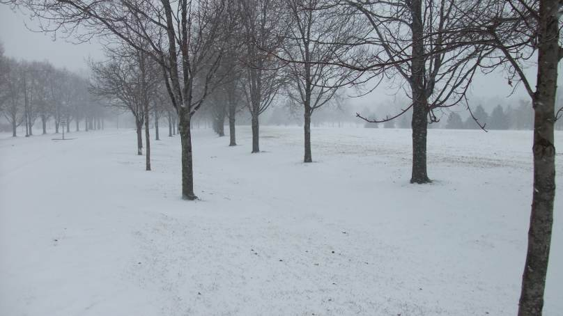 midwest snowpocalypse, Who went out and rode in it?-2011-02-01-snow-storm-04s.jpg