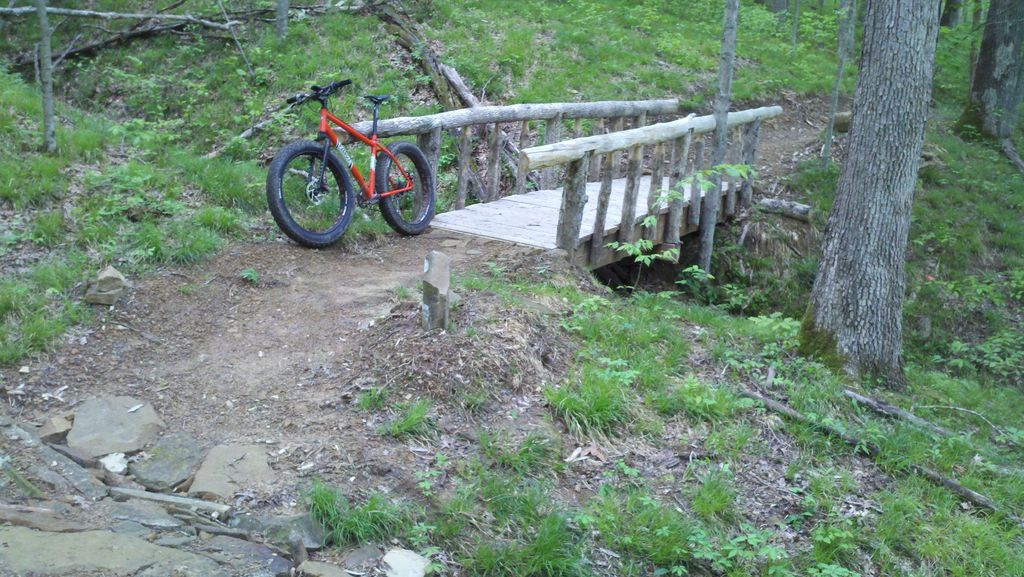 Daily fatbike pic thread-2011-05-17_13-58-32_590.jpg