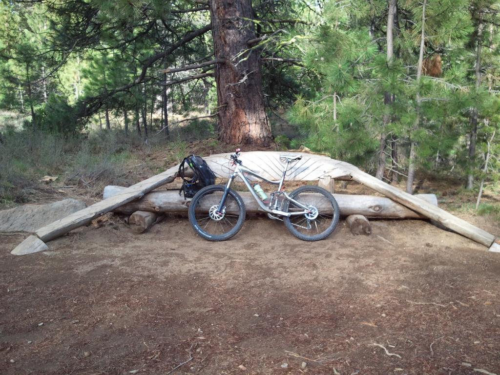 Another Stolen Bike! 2008 Giant Trance X, totally custom build, Bellingham-2011-06-13-08.02.17.jpg