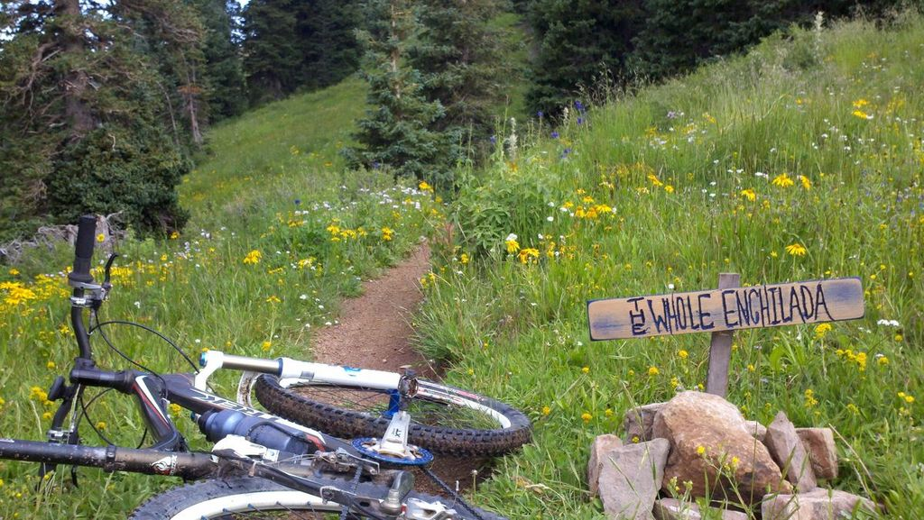 """Post your """"Trail Signs"""" here-2011-08-21_09-08-58_86.jpg"""