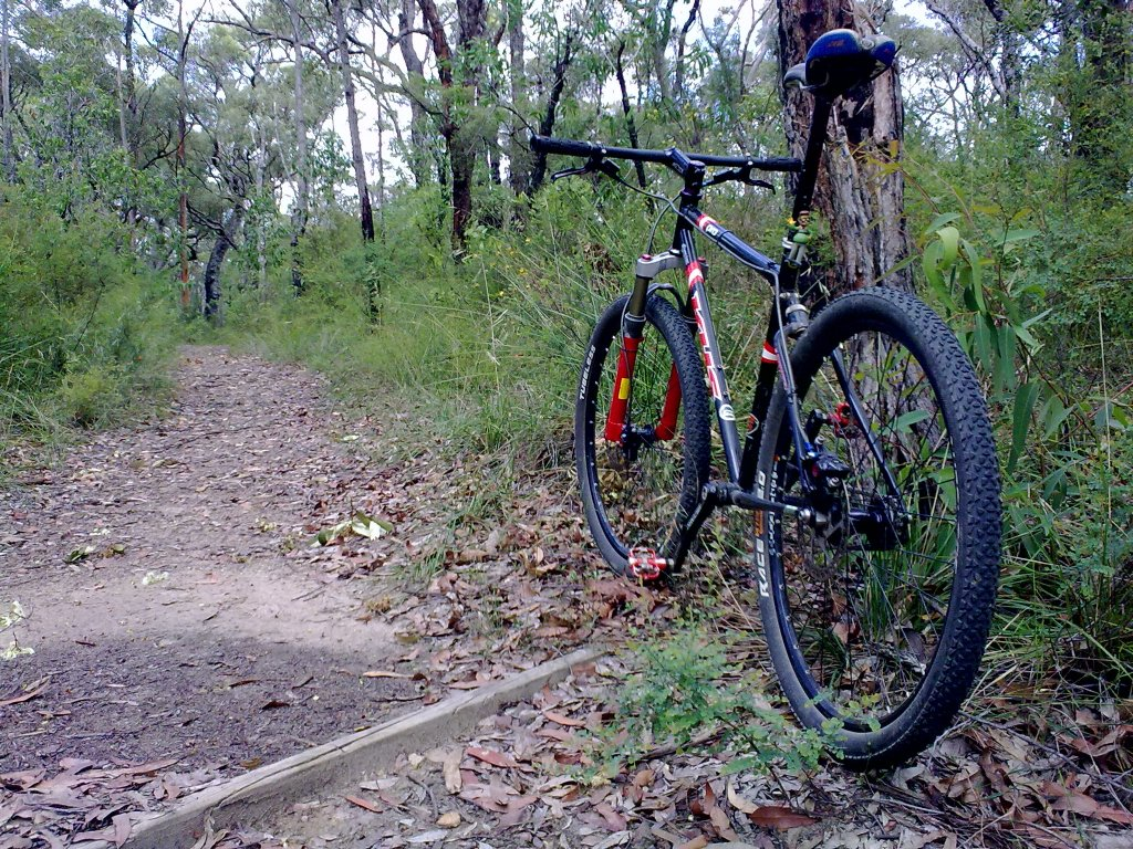 "29er SS looking to convert an old 26"" to SS-20112012.jpg"