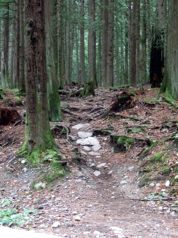 Advice requested: first time in Squamish/Whistler-2011_1203new0002.jpg