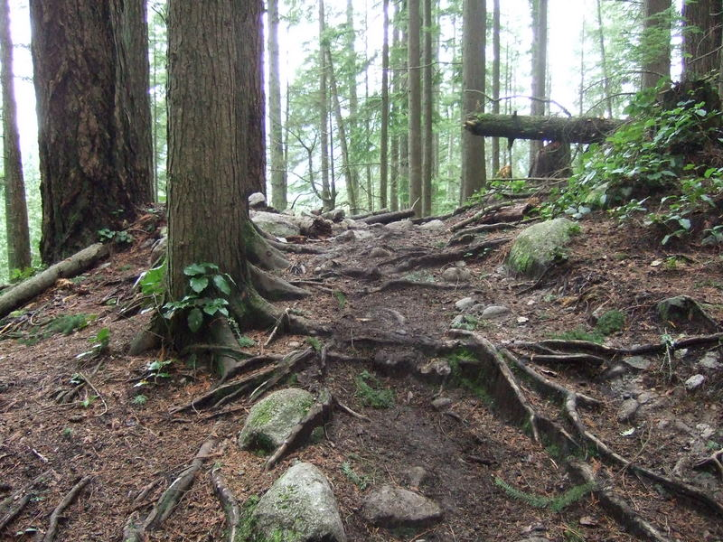 Advice requested: first time in Squamish/Whistler-2011_1203new0033.jpg