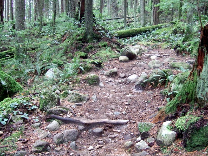 Advice requested: first time in Squamish/Whistler-2011_1203new0077.jpg