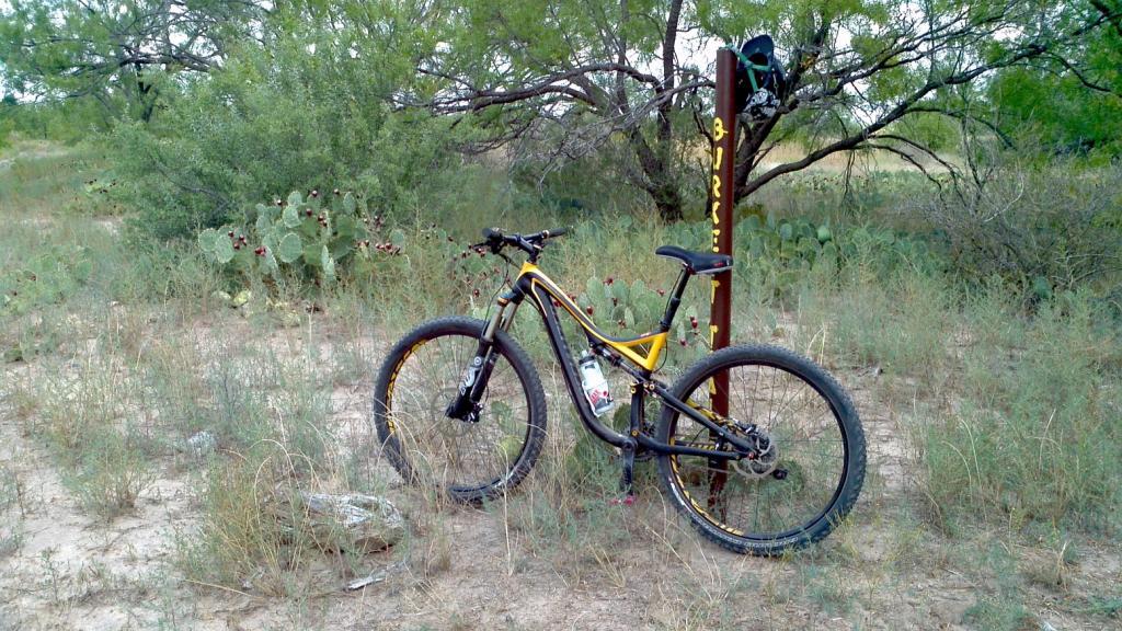Got my 2013 stumpy fsr elite 29er today-2012-09-01_15-02-09_8.jpg