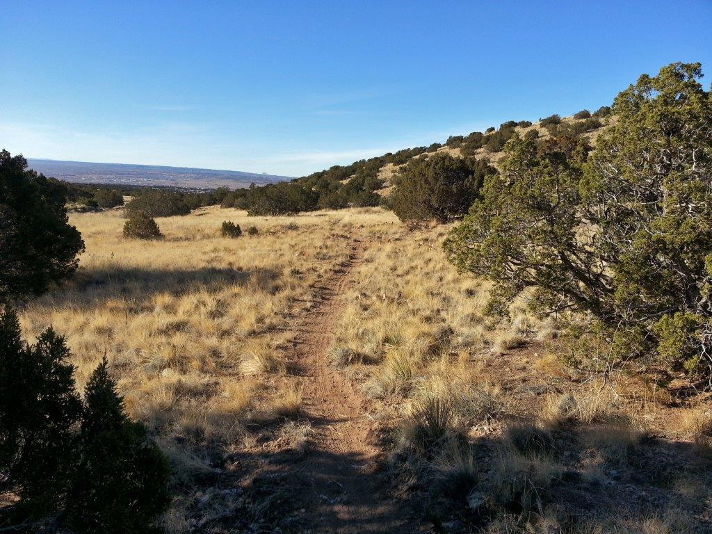 Placitas Trail Work Day-2012-12-20-14.45.27.jpg