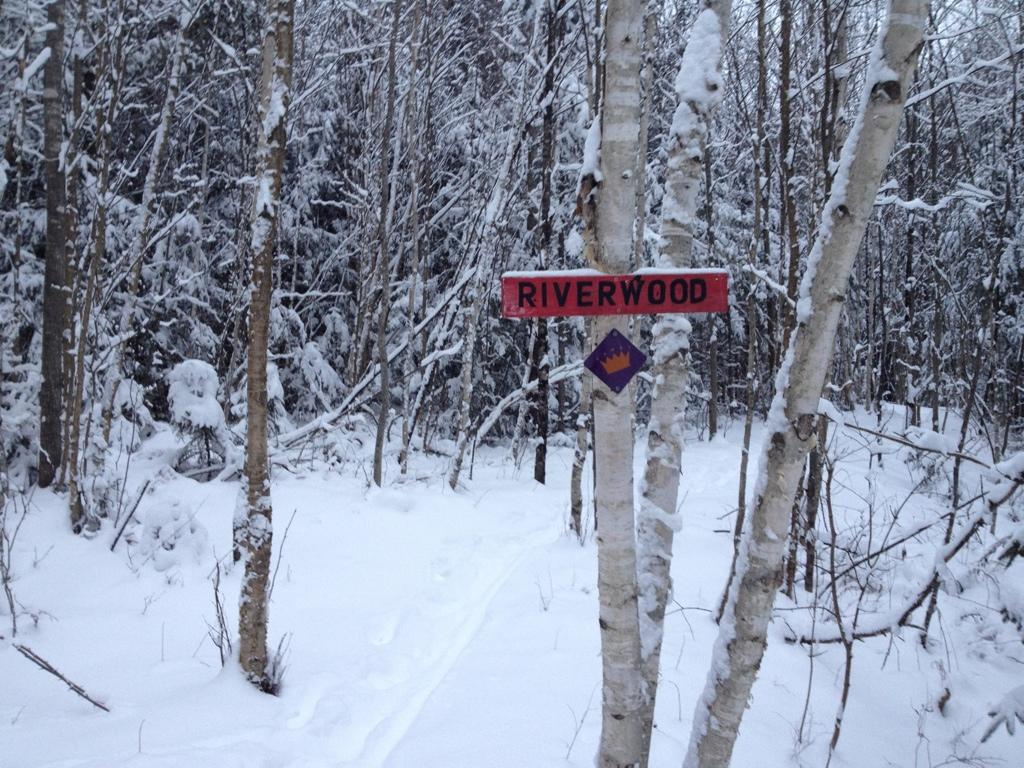 Snow!-2012-12-29-19.18.53.jpg