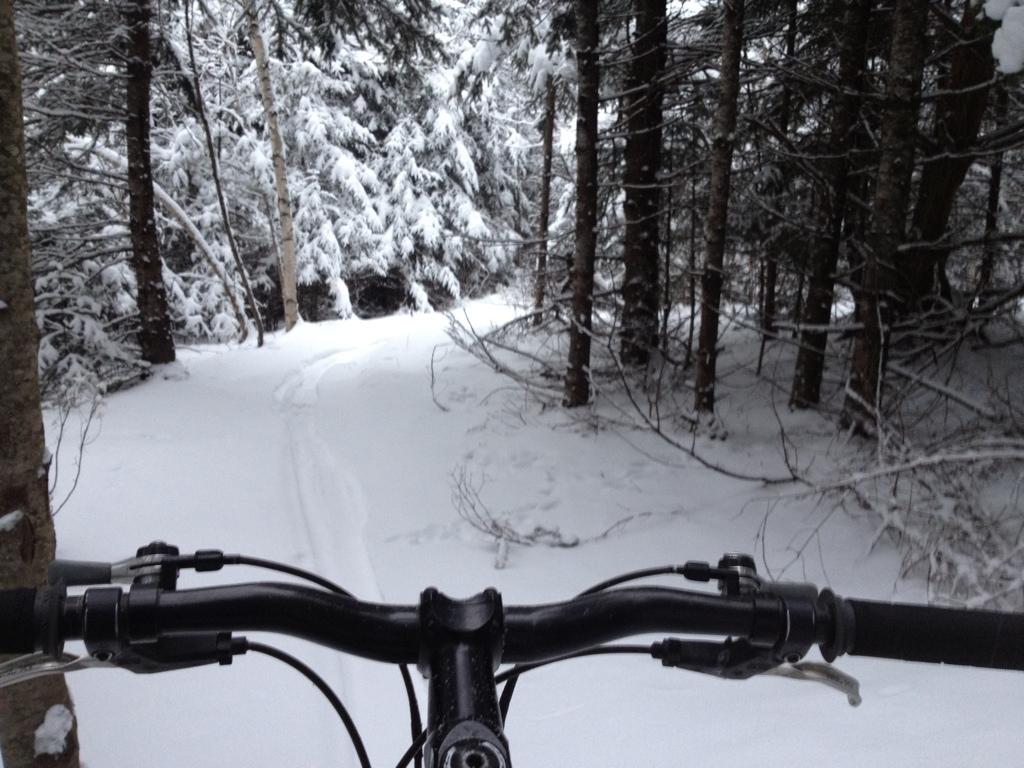 Snow!-2012-12-29-19.19.13.jpg
