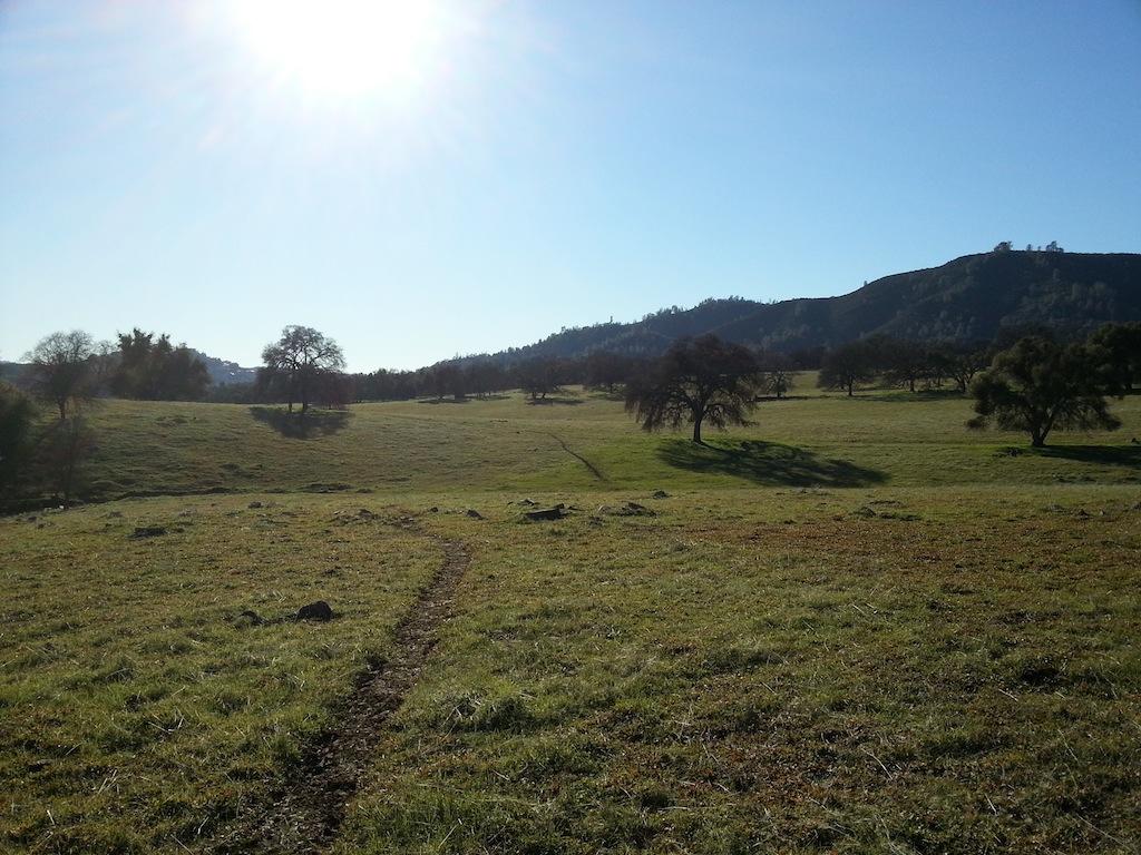 Cattle Drive-20121230_141040.jpg