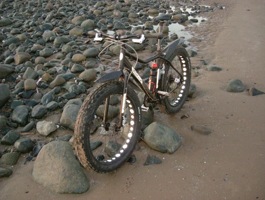 Dr FG's UK Fatback Build :)-2012_0326image0034.jpg