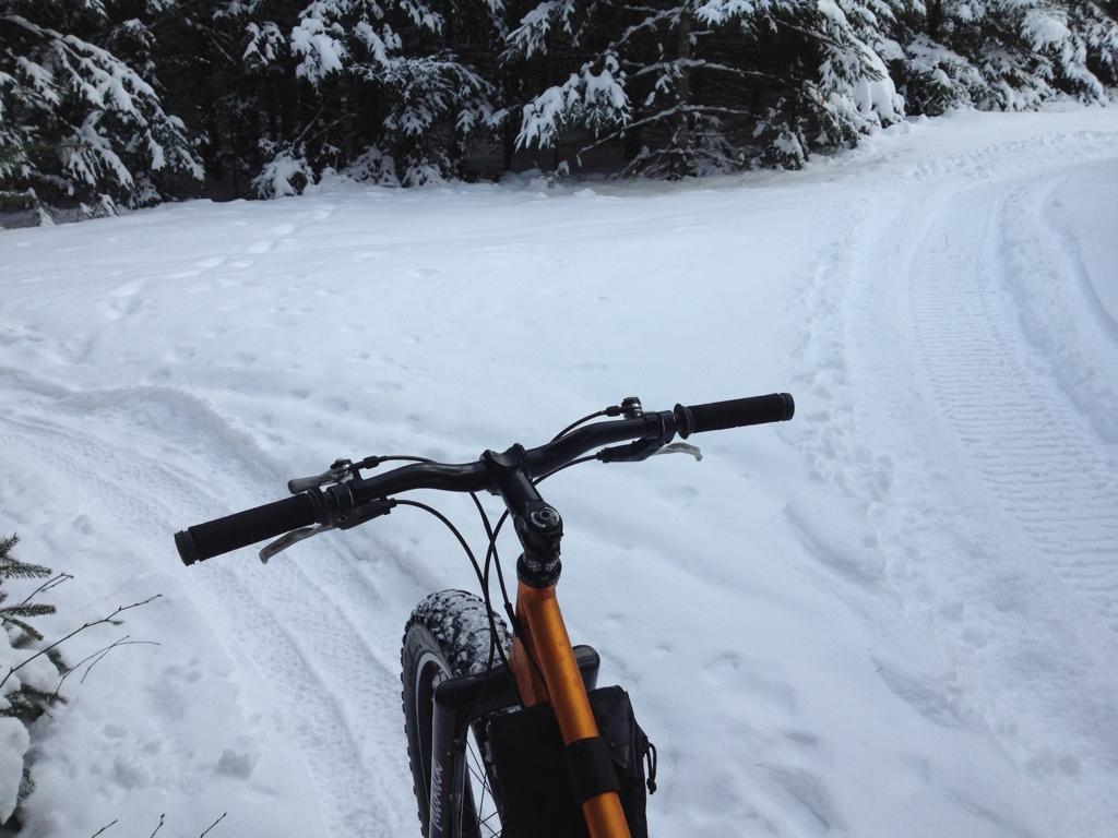 Snow!-2013-01-02-13.10.07-1.jpg