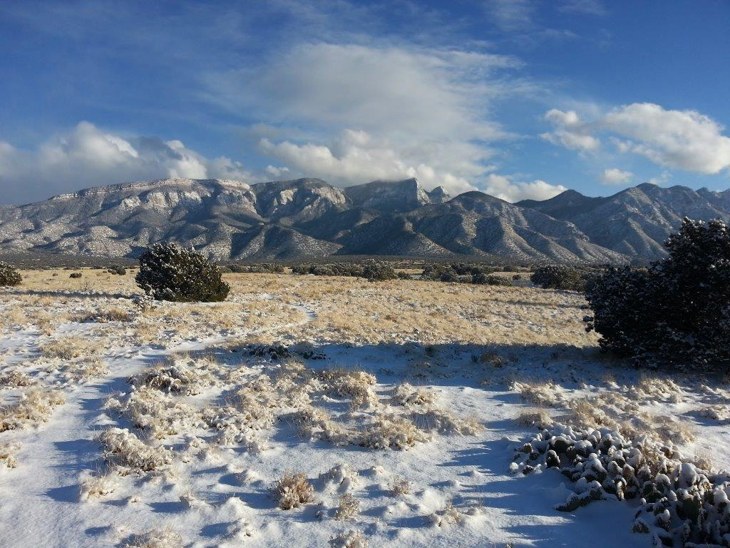 The NM Trail Pix Thread-2013-01-14-15.56.12.jpg