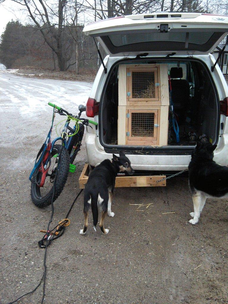 Bikejor thread!-2013-01-19-10.18.48.jpg