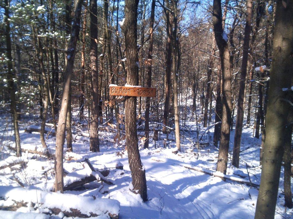 Durham Forest Conditions-2013-02-04-13.15.41.jpg